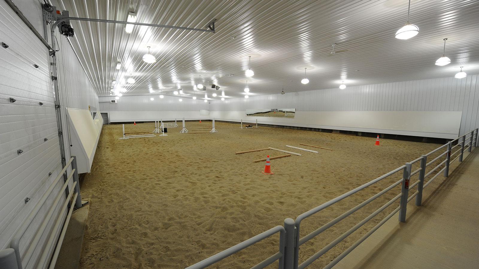 Mathy-equestrian-9