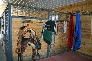 Saddles_eps